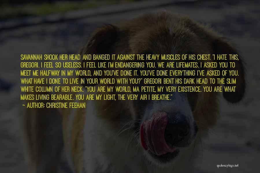 You Meet Me Quotes By Christine Feehan