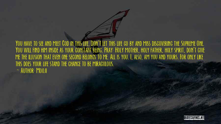 You Meet Me Quotes By Mooji