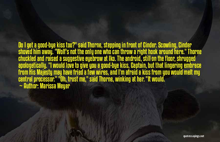 You Melt Me Quotes By Marissa Meyer