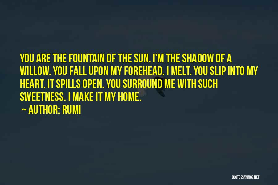 You Melt Me Quotes By Rumi