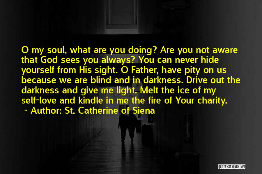 You Melt Me Quotes By St. Catherine Of Siena