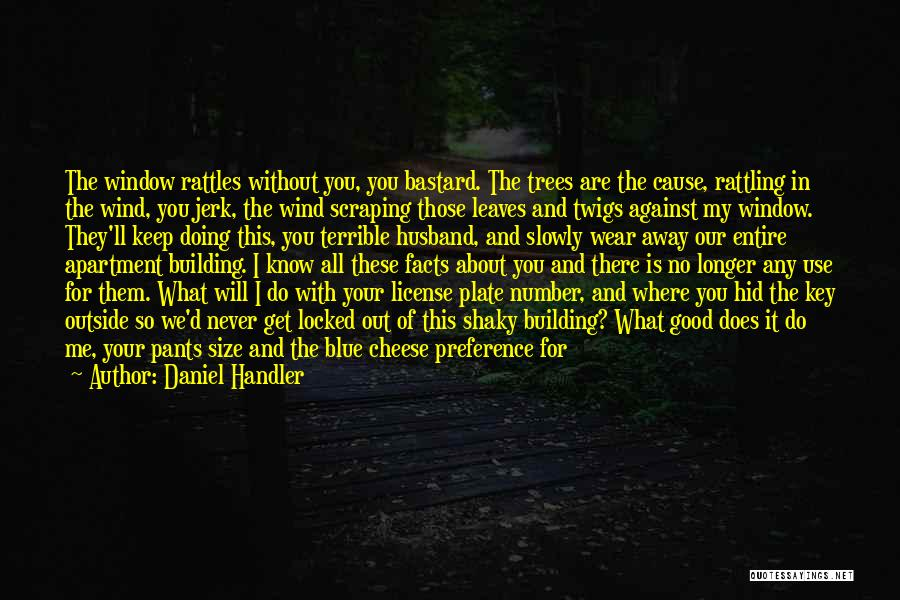 You Miss Me Now Quotes By Daniel Handler