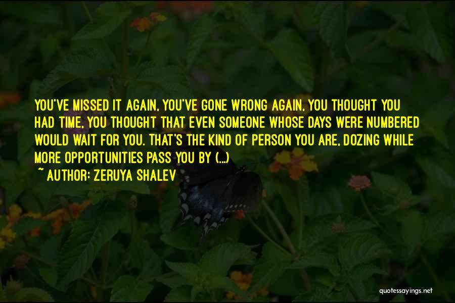 You Missed It Quotes By Zeruya Shalev