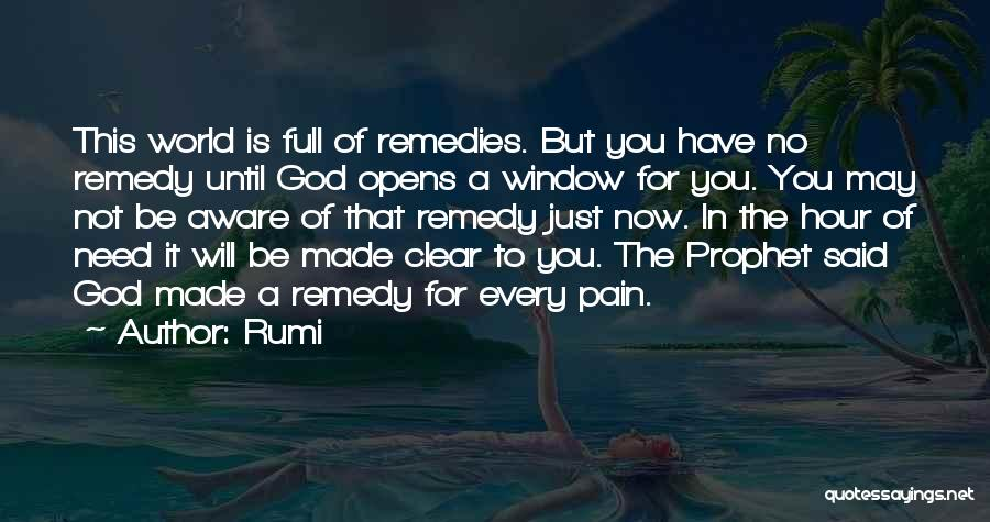 You Need God Quotes By Rumi