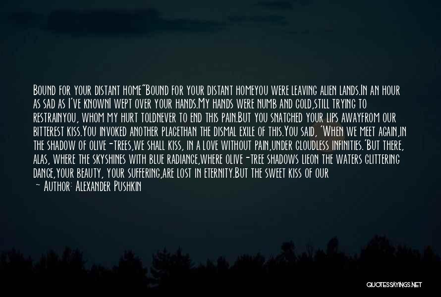 You Never Love Me Quotes By Alexander Pushkin