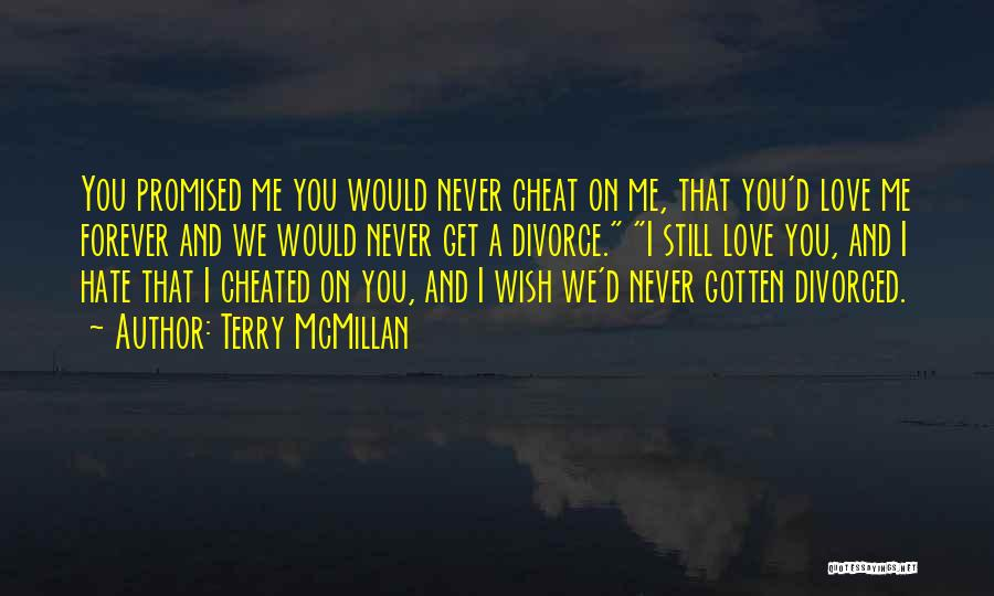 You Never Love Me Quotes By Terry McMillan