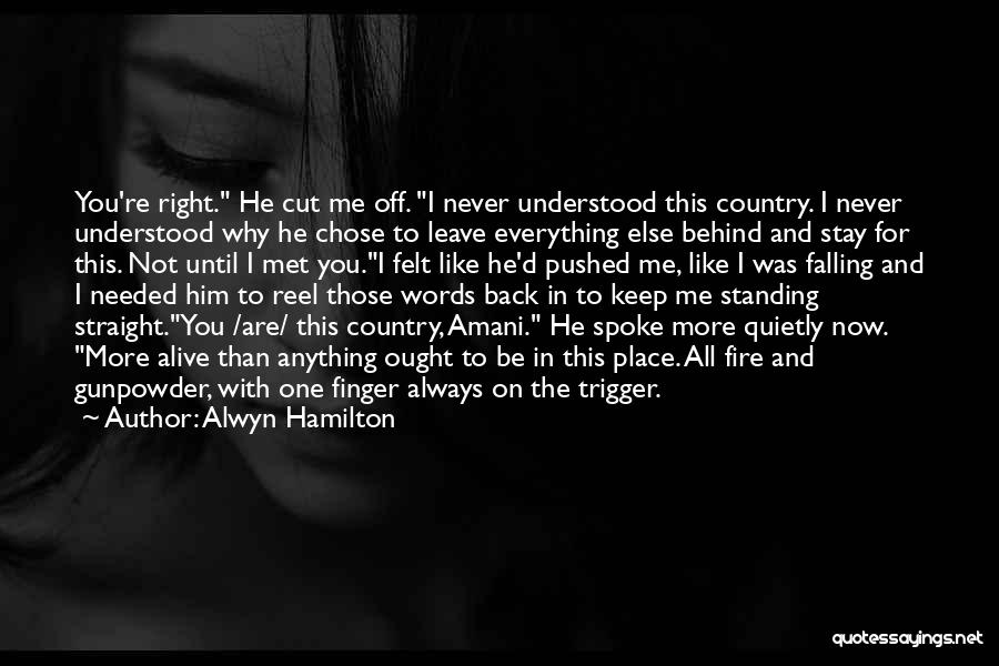 You Not Like Me Quotes By Alwyn Hamilton