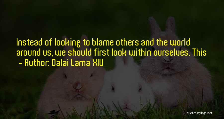 You Only Got Yourself To Blame Quotes By Dalai Lama XIV