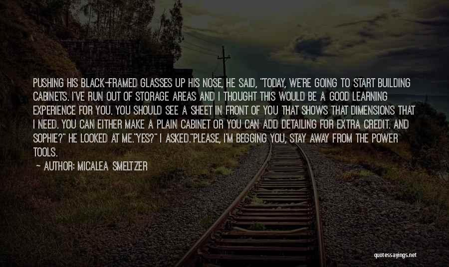 You Pushing Me Away Quotes By Micalea Smeltzer