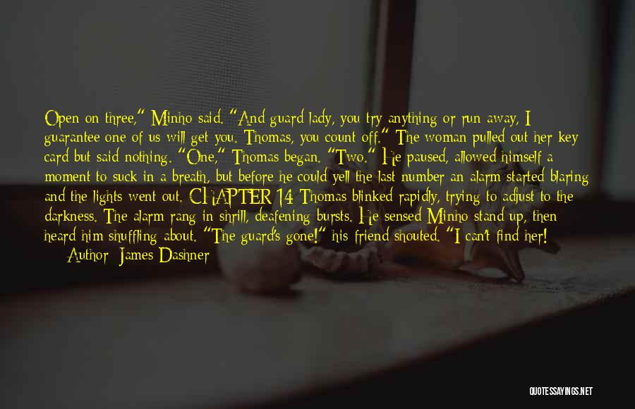 You Rang M'lord Quotes By James Dashner