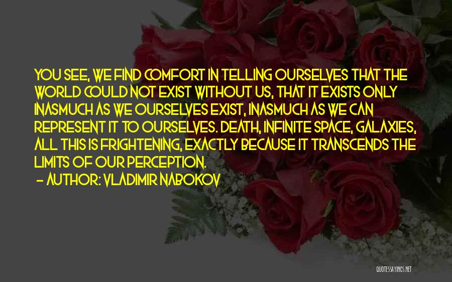 You Represent Quotes By Vladimir Nabokov