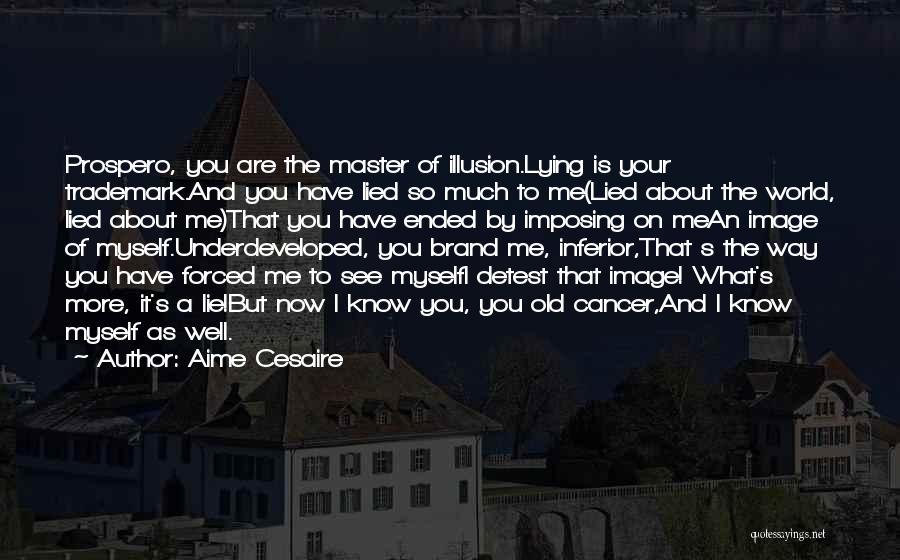 You See Me Now Quotes By Aime Cesaire