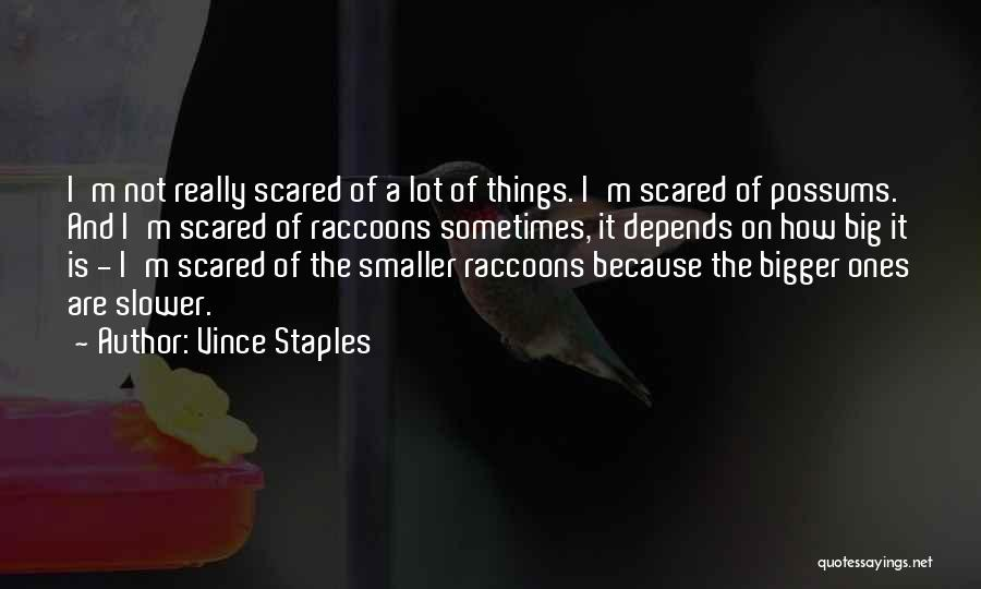 You Should Be Scared Of Me Quotes By Vince Staples