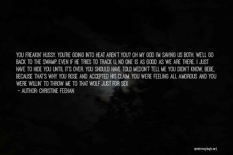 You Should Have Told Me Quotes By Christine Feehan
