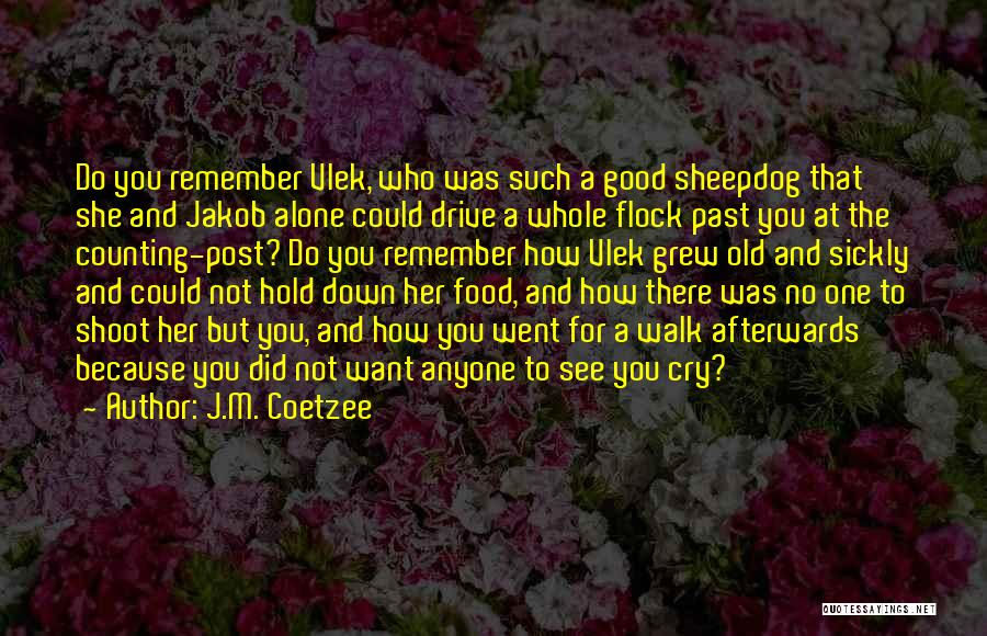 You Walk Alone Quotes By J.M. Coetzee