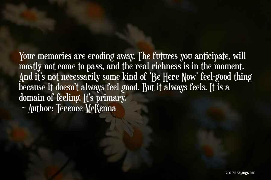 You Will Always Be Here Quotes By Terence McKenna