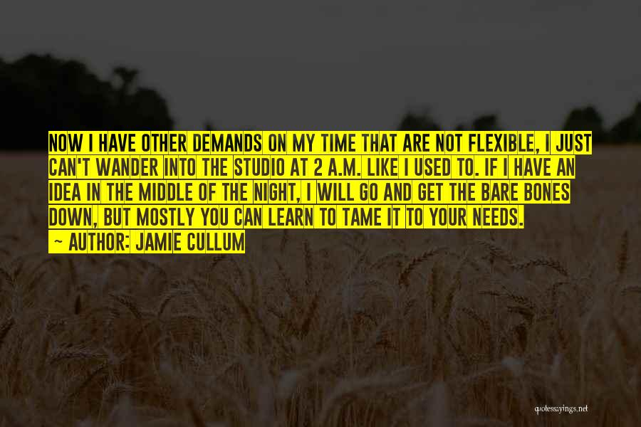 You Will Learn In Time Quotes By Jamie Cullum