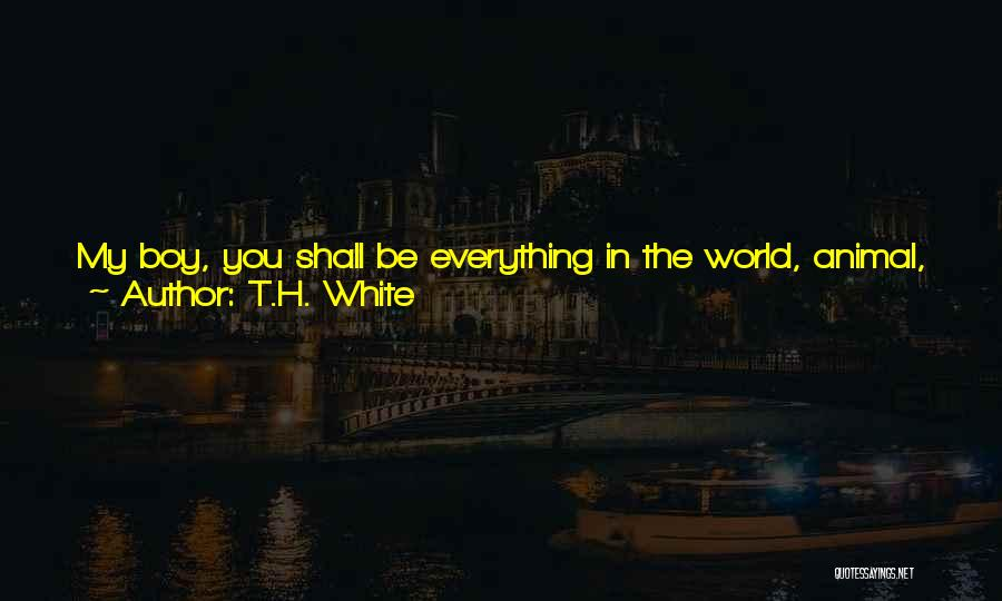 You Will Learn In Time Quotes By T.H. White