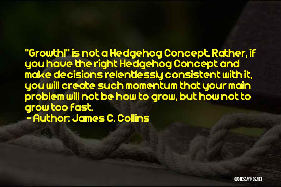 You Will Make The Right Decision Quotes By James C. Collins