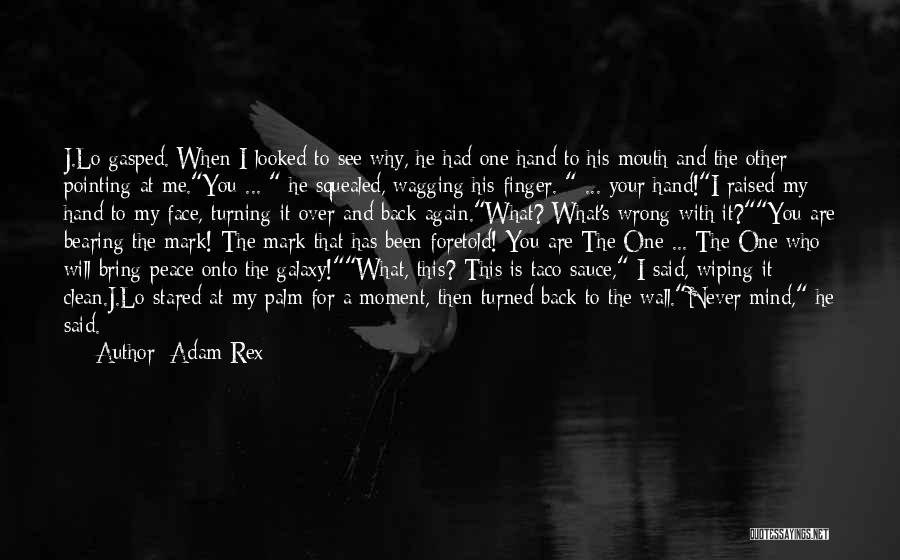 You Will Never See Me Again Quotes By Adam Rex
