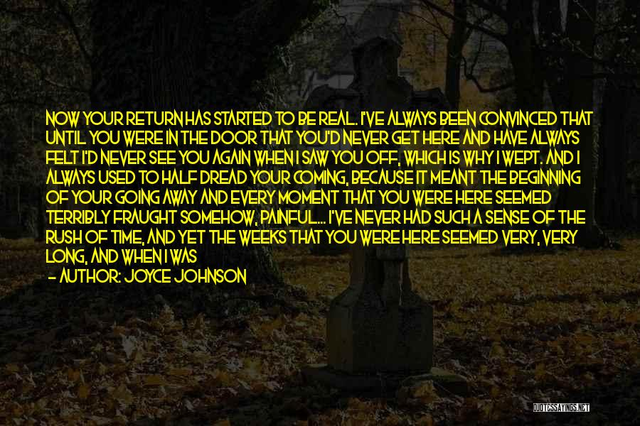 You Will Never See Me Again Quotes By Joyce Johnson