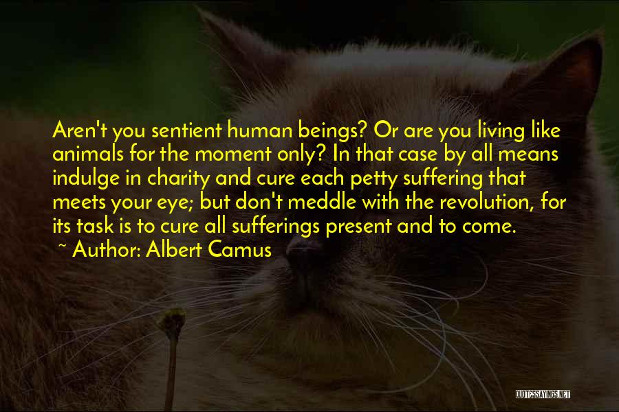 You You Quotes By Albert Camus