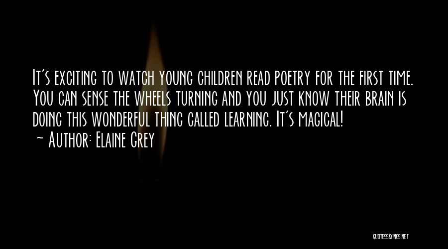 Young Children's Learning Quotes By Elaine Grey