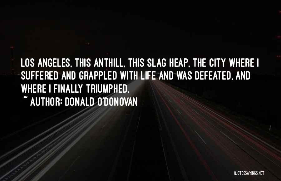 Your A Slag Quotes By Donald O'Donovan