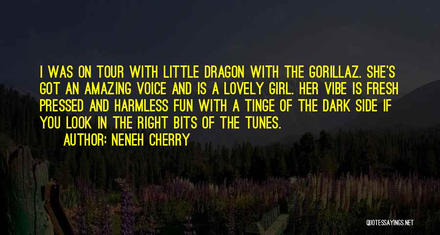 Your Amazing Girl Quotes By Neneh Cherry