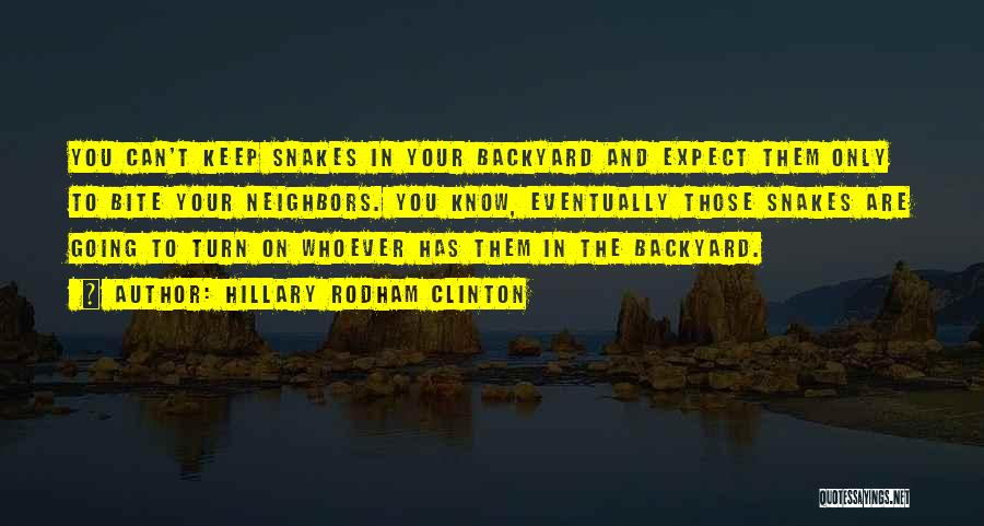 Your Backyard Quotes By Hillary Rodham Clinton