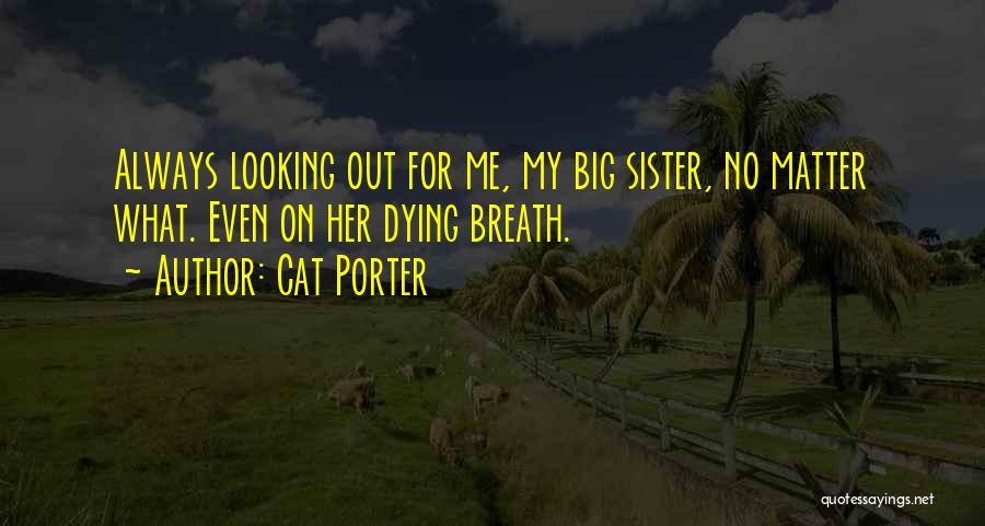 Your Cat Dying Quotes By Cat Porter