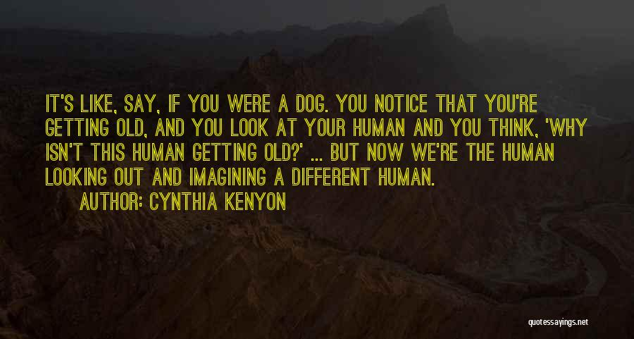 Your Dog Quotes By Cynthia Kenyon