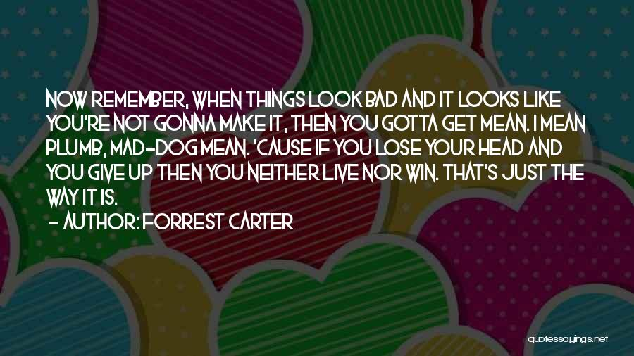 Your Dog Quotes By Forrest Carter