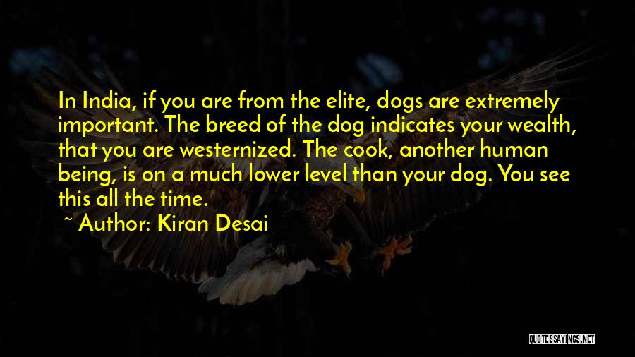 Your Dog Quotes By Kiran Desai