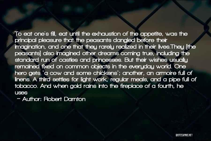 Your Dreams Coming True Quotes By Robert Darnton