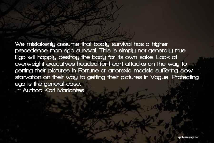 Your Ego Will Destroy You Quotes By Karl Marlantes