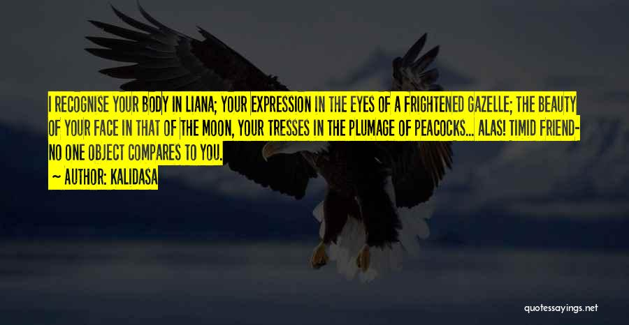 Your Eyes Beauty Quotes By Kalidasa
