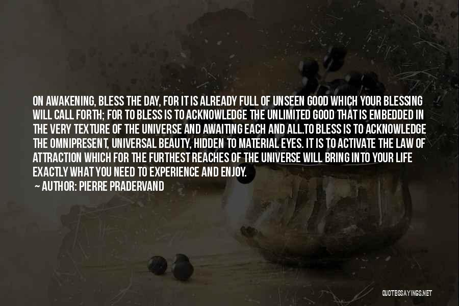 Your Eyes Beauty Quotes By Pierre Pradervand