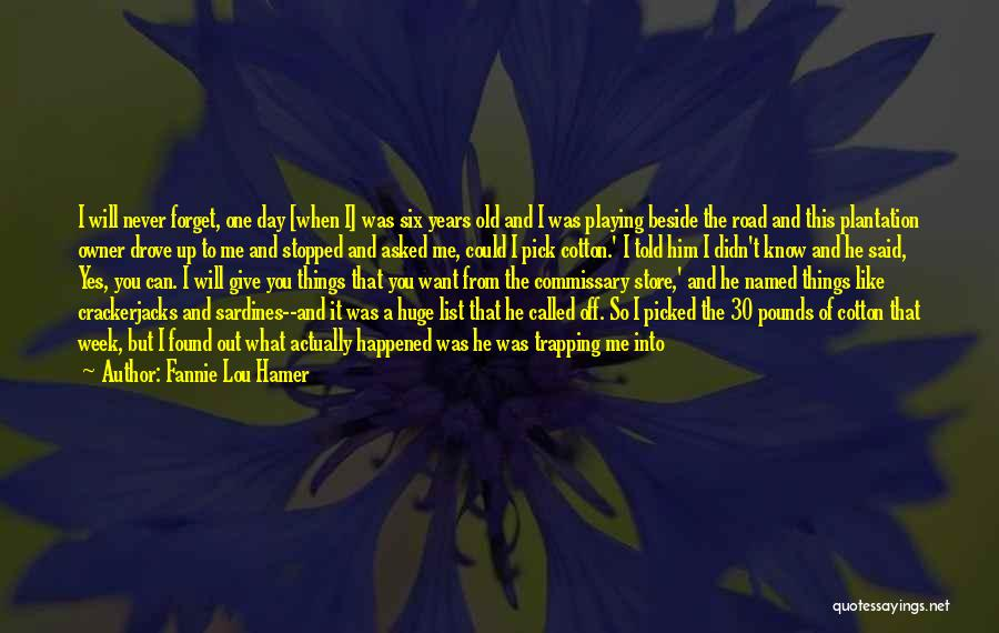Your Last Day At Work Quotes By Fannie Lou Hamer