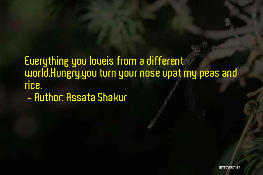 Your My World My Everything Quotes By Assata Shakur