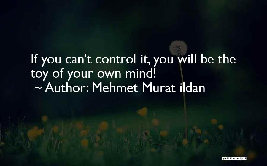 Your Own Mind Quotes By Mehmet Murat Ildan