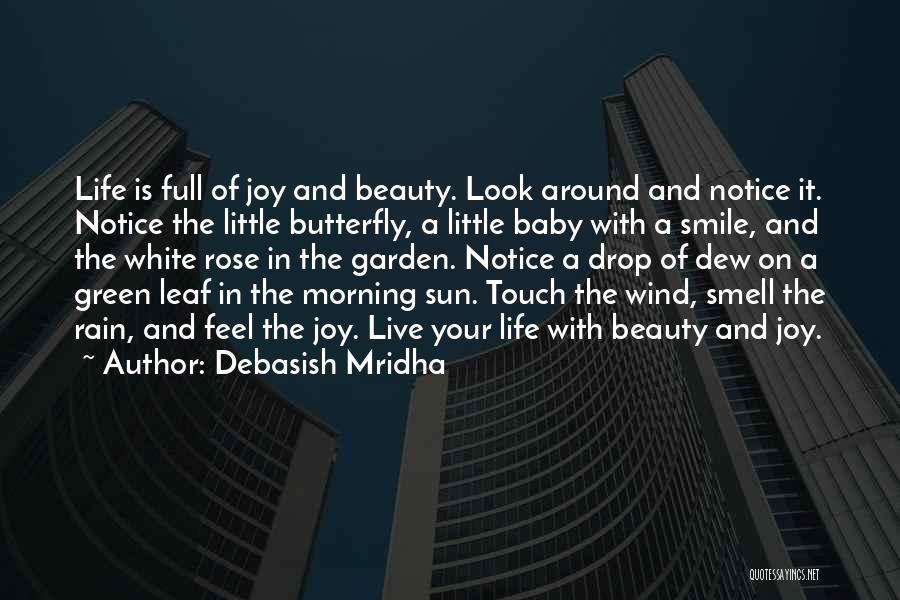 Your Smile Baby Quotes By Debasish Mridha