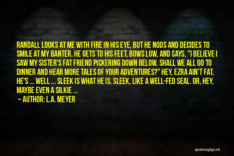 Your Smile Looks Quotes By L.A. Meyer
