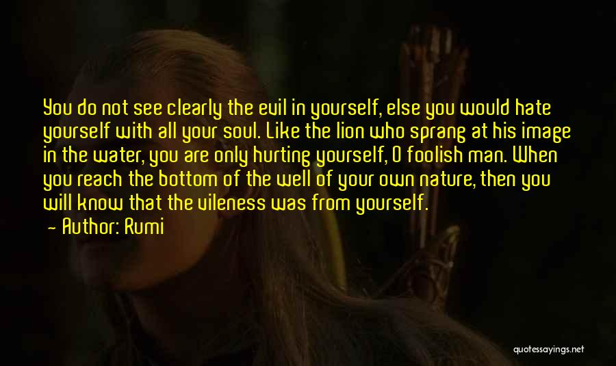 Your Soul Hurting Quotes By Rumi