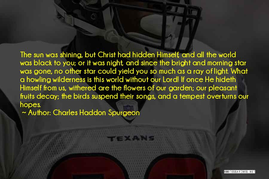 You're A Shining Star Quotes By Charles Haddon Spurgeon