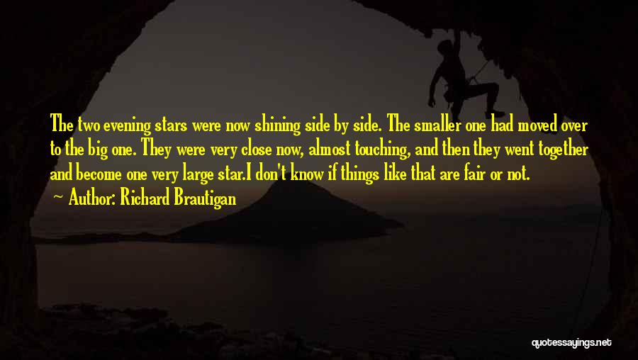 You're A Shining Star Quotes By Richard Brautigan