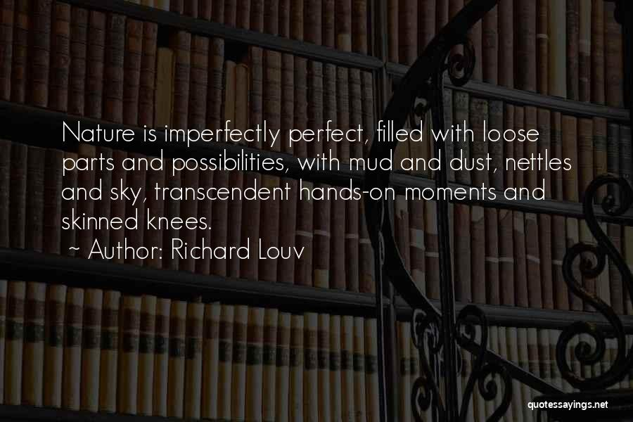 You're Imperfectly Perfect Quotes By Richard Louv