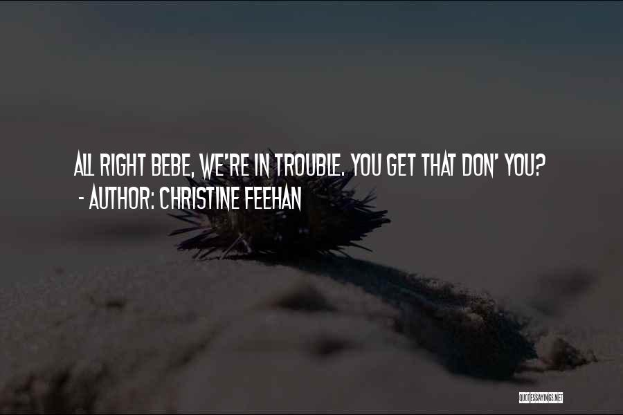 You're In Trouble Quotes By Christine Feehan