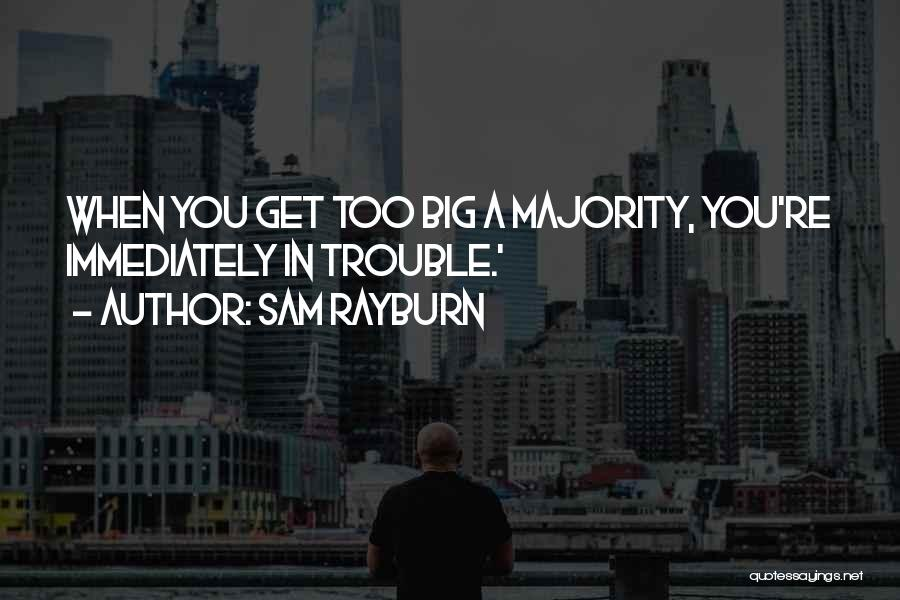 You're In Trouble Quotes By Sam Rayburn