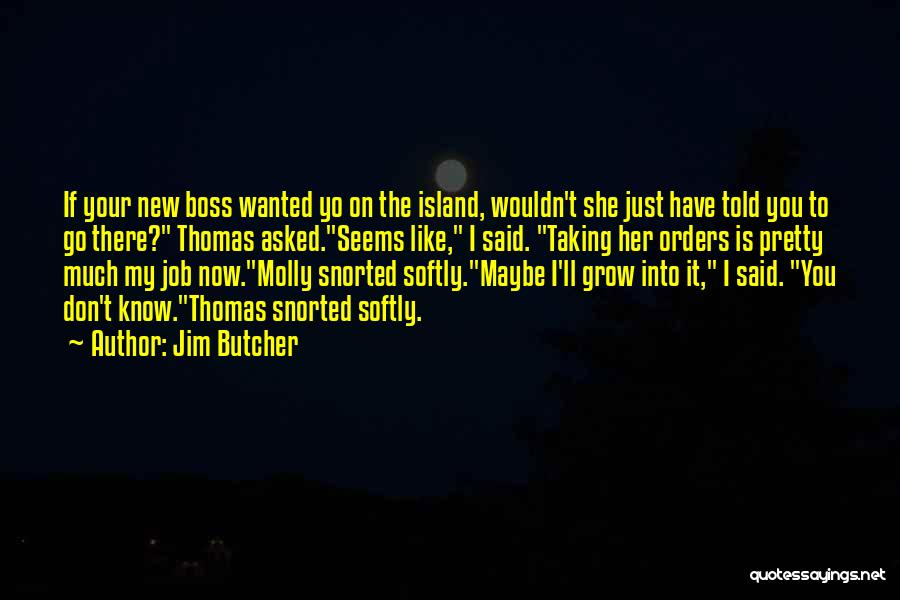 You're My Boss Quotes By Jim Butcher
